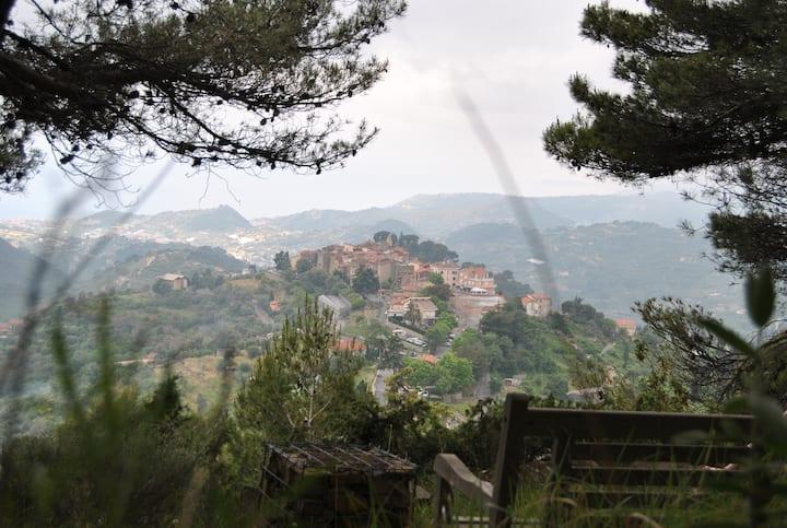 Panoramic Villa in Seborga, Countryside Bordighera