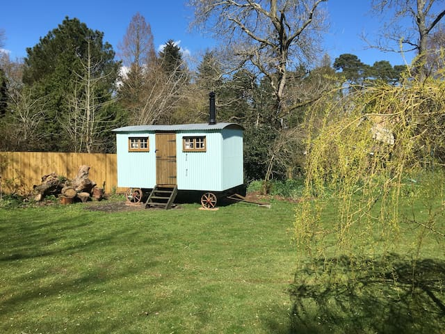 Rustic Shepherd's Hut Rural Setting - Ringwood - Hut