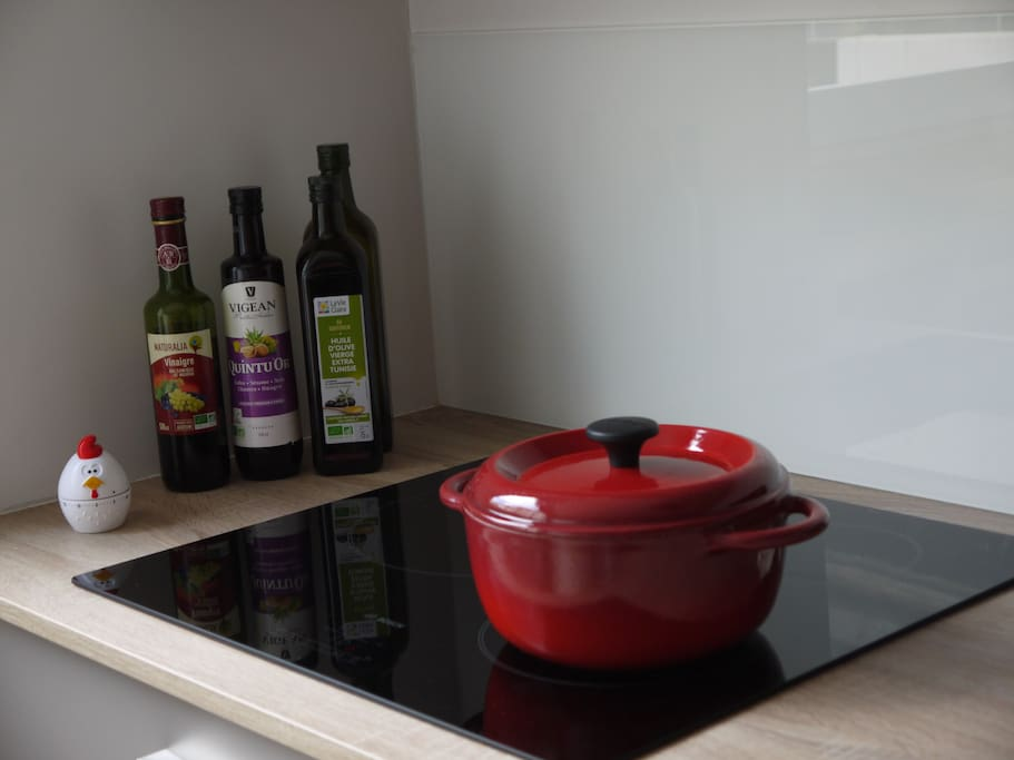 We will provide you everything you need to cook (pans, oil, vinegar, salt...)