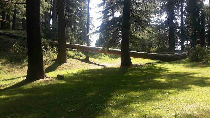 Smart Hill Kalatop: Live The Nature