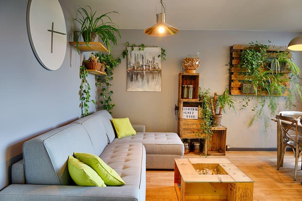 Les plantes prennent une place importante dans l'appartement