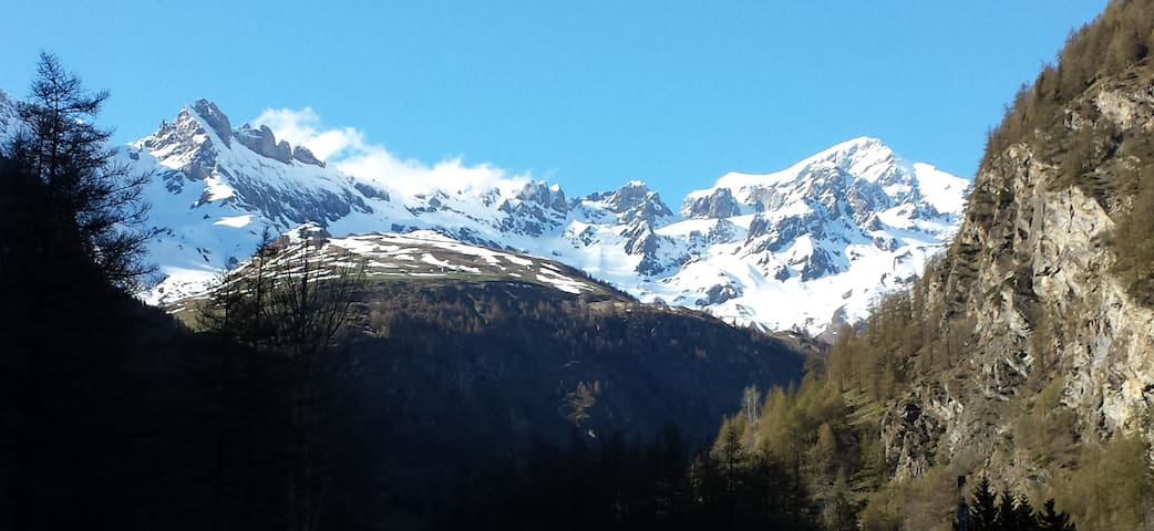 Apartment with garden facing mount Grand Combin - Ollomont - Byt