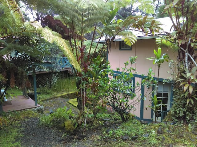 Quiet Hawaiian Forest Cabin - volcano  - Cabaña