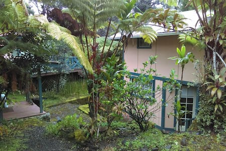 Quiet Hawaiian Forest Cabin - volcano