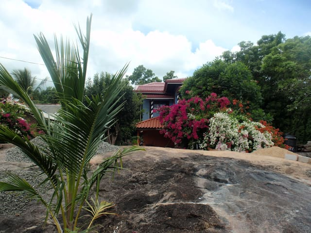 Rockvilla Home stay Bed and breakfast