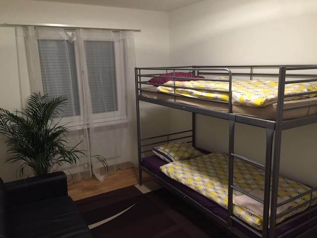 Lafayette Dorm Room for 2 people - Zuchwil - อพาร์ทเมนท์