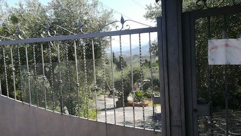 La casa tra il verde degli ulivi a Fonte Nuova 2