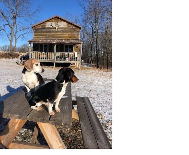 Brye's Cabin