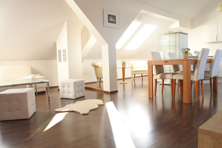 Beautiful attic apartment near a nice ski center