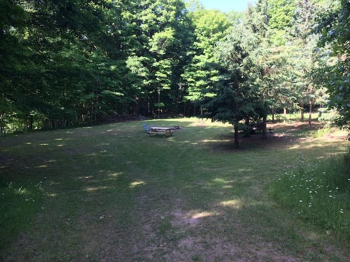 Back 40 Camping