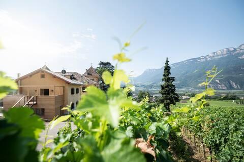 Noble Loft in the vineyards