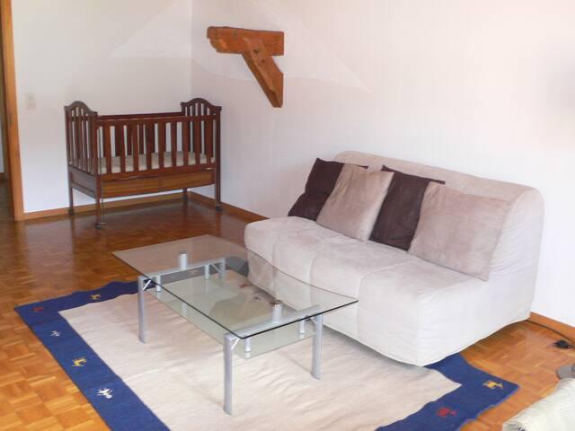 living room / Wohnzimmer / salon