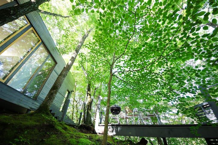 Morinoya Kaikian (自然に囲まれた貸切 Villa)