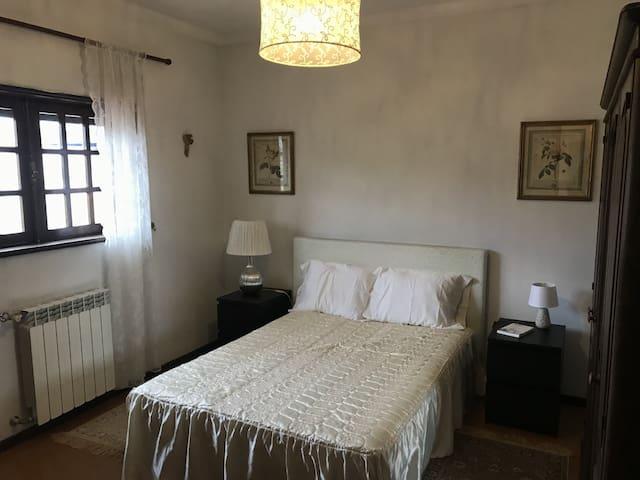 Suite Dicondra- casa rústica