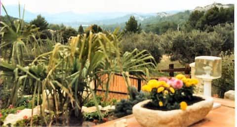 Petit Paradis aux Baux de Provence