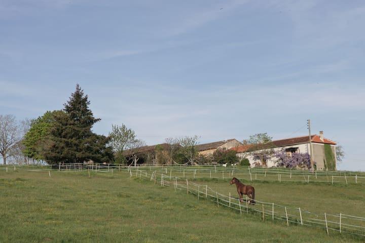 Ferme équestre de Cantemerle - Monflanquin - บ้าน