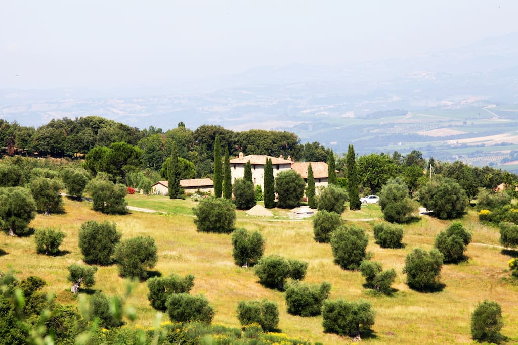Agriturismo vitabella singola chambres d 39 h tes louer for Italie chambre d hote