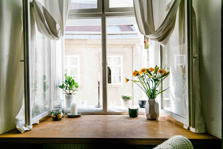 Great City Flat in the historic center of Vienna