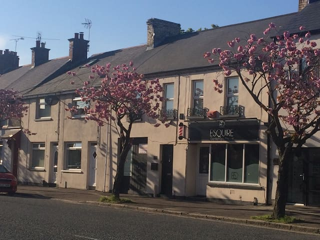 Cherry Blossom House, Newtownards Town Centre