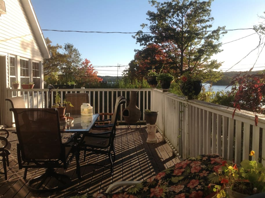 Back deck/ shared space