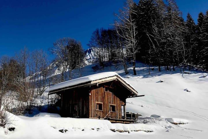 Chalet de montagne au pied du Mt Blanc Alt 1300 m