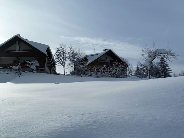 """I Caprioli"" hill - winter view"