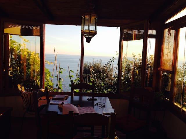 Arancio e Glicine, giardino e vista meravigliosa
