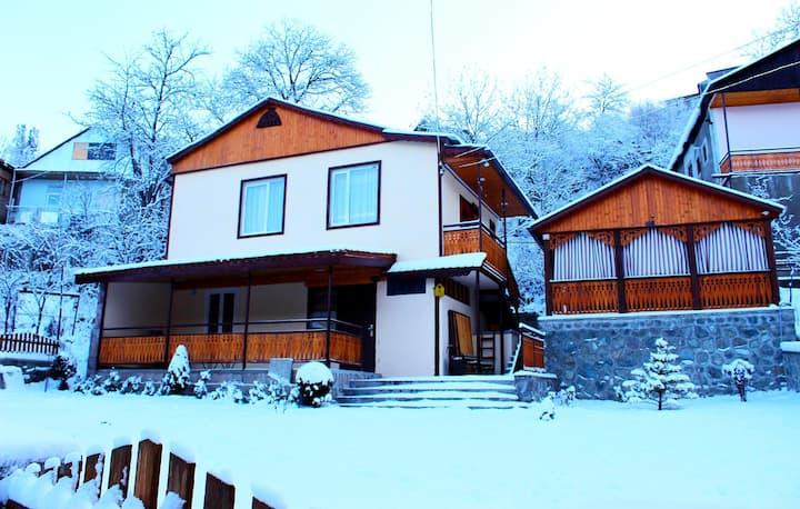 Vardazarian Residence Dilijan