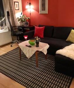 Sjarmerende ett-roms leilighet Oslo sentrum - Oslo - Appartement