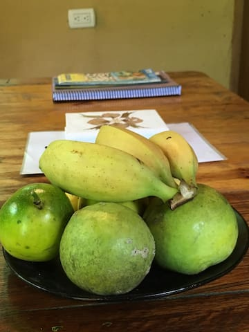Fresh bananas, passion fruits and sapotes blancos from our land.