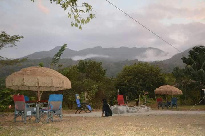 Jungle Salvaje Hostel