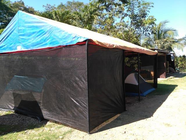 Camping Popeye