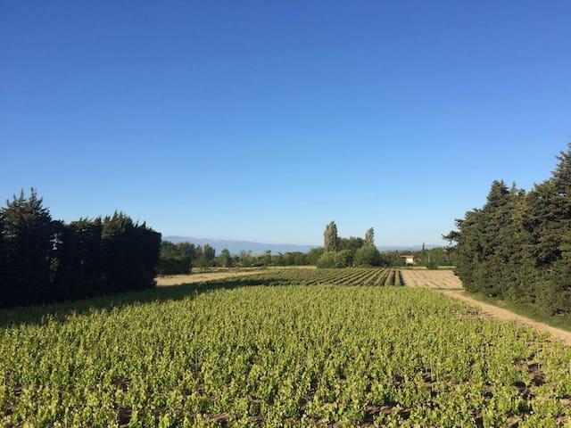 Villa au calme, vue sur vignes et Mont Ventoux - Jonquerettes - บ้าน