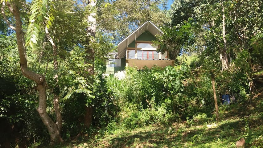 The Wild Nillamba-Hideaway Camp