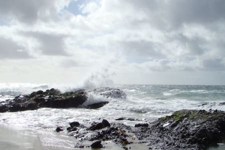 Charming, private, ocean view, tiny house - Laguna Beach - House