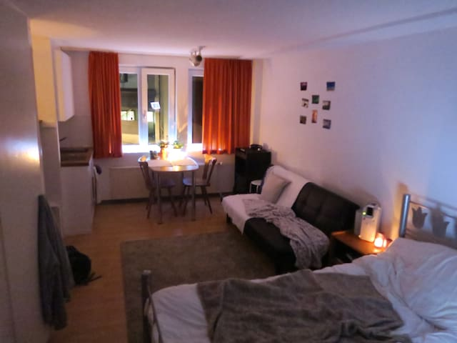 Studio 200m from lift! - Flims