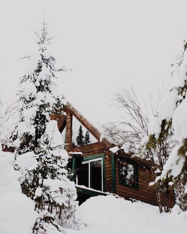 Cabins in Minnesota