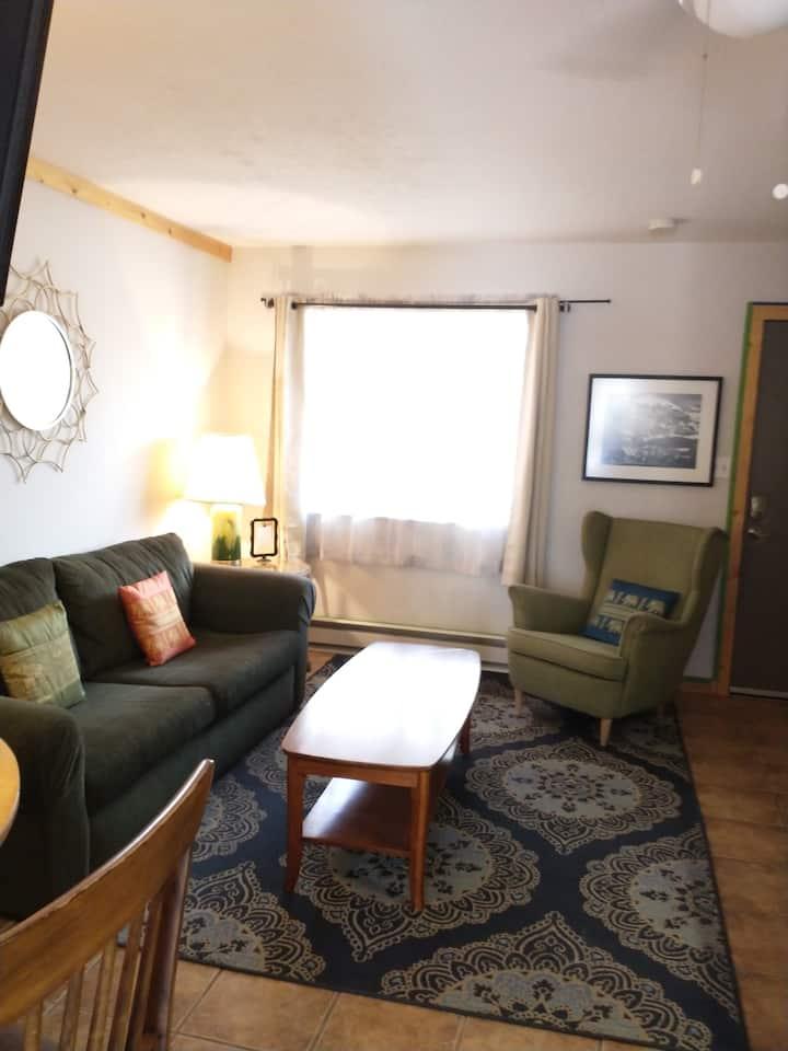 Cozy Downtown Crestone Inn/Apartment 4