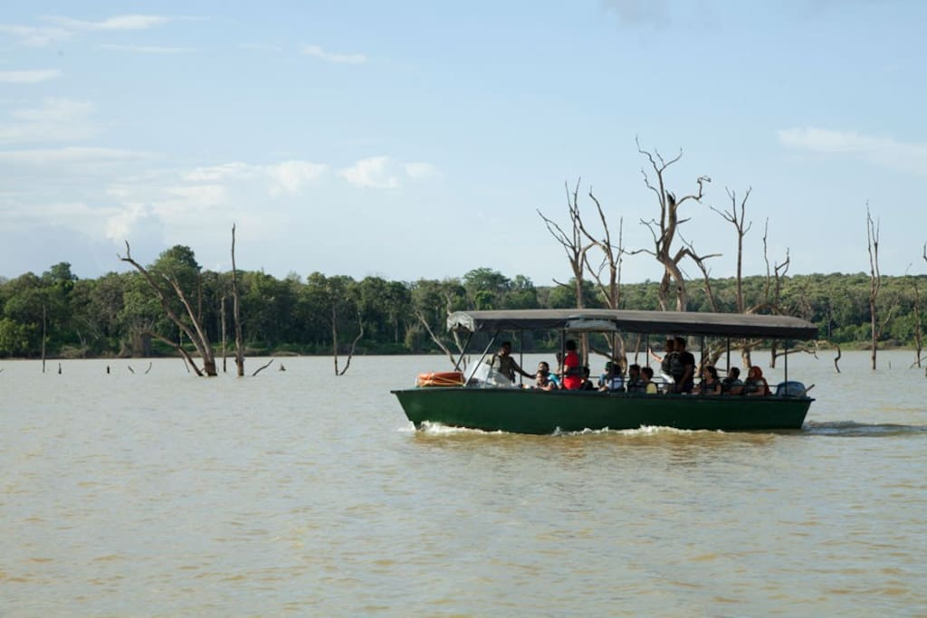Boat safari organised by Jungle lodge and Forest department