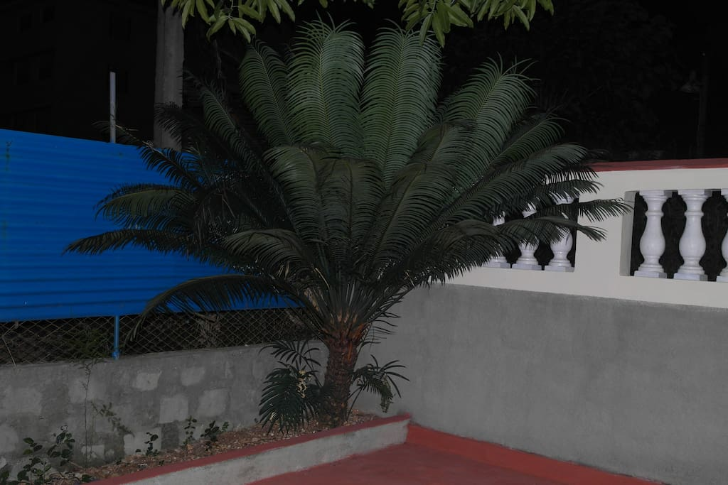 Terraza entrada