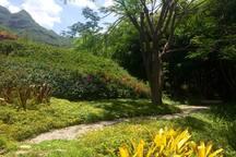 Jardín entre montañas