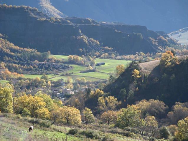 Les Terrasses de Haute Provence - La Robine-sur-Galabre - Dům