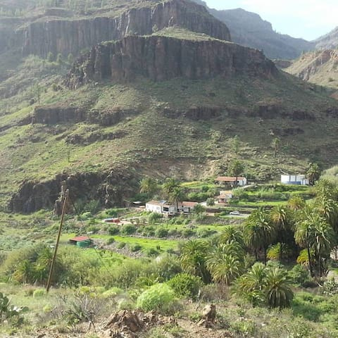 Our Eco Villa  Ecotaracanaryislands