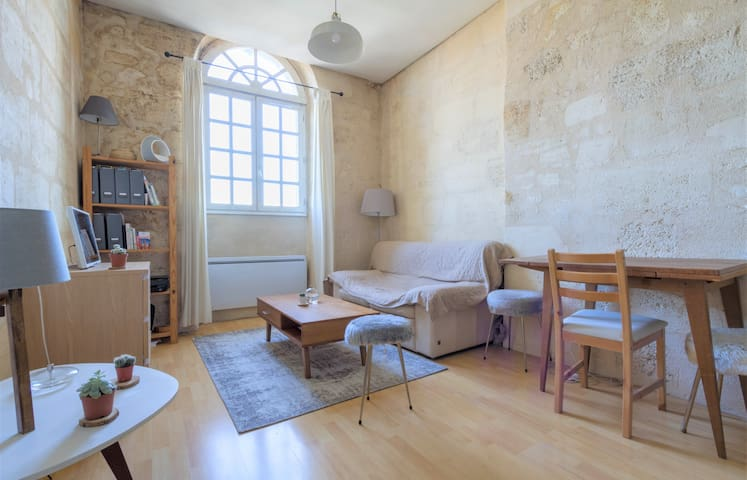 Nice apartment overlooking the Garonne