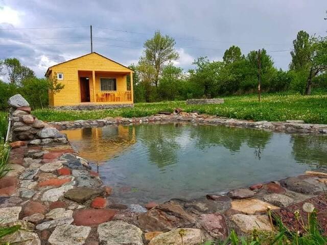 семейная гостиница -Майя,дом и деревянный коттедж