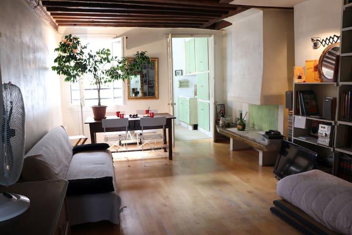 Appartement charmant Le Marais Paris