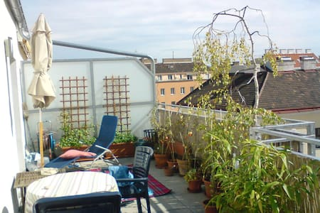 Cosy bright bedroom, rooftop view and big terrace - Vienne