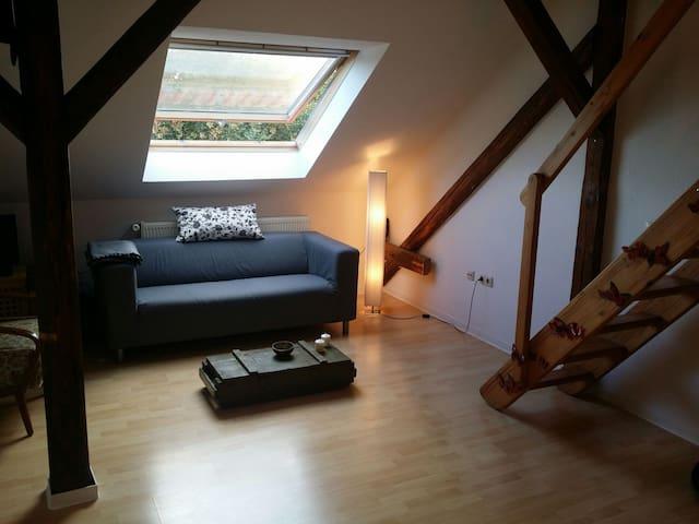 Zentrale Wohnung mit Charme - Erfurt - Wohnung