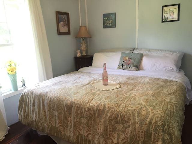 Bedroom with King size Pillow top mattress