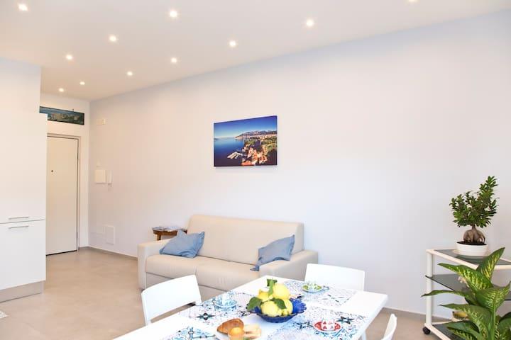Soggiorno/camera da letto con divano letto - Living room/bedroom with sofa-bed